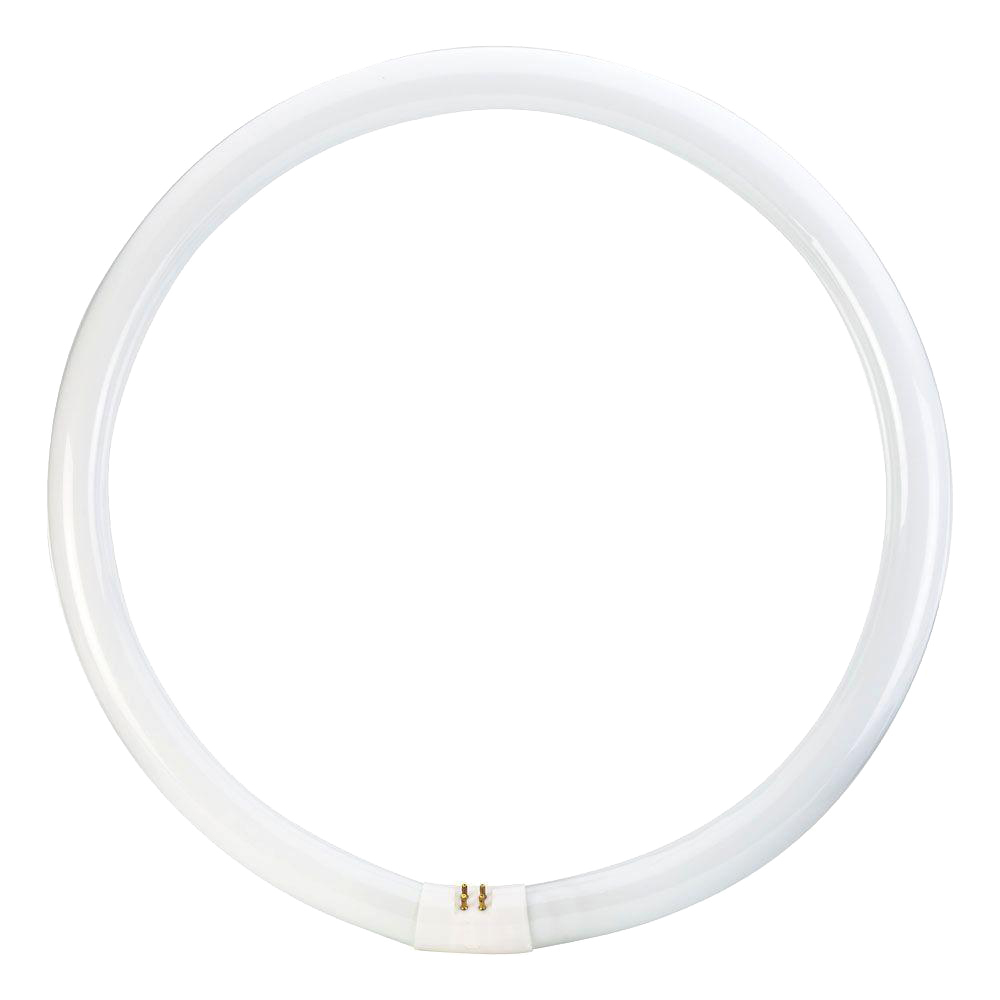 Philips 391185 - FC16T9/COOL WHITE PLUS